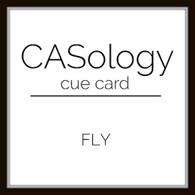 CASWeek 255 - Fly