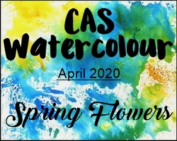 CAS Watercolor April 2020